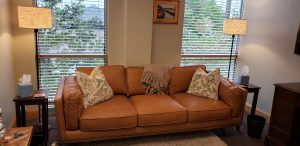dr. erika's couch and windows