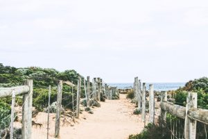 path with wood fence leading to ocean